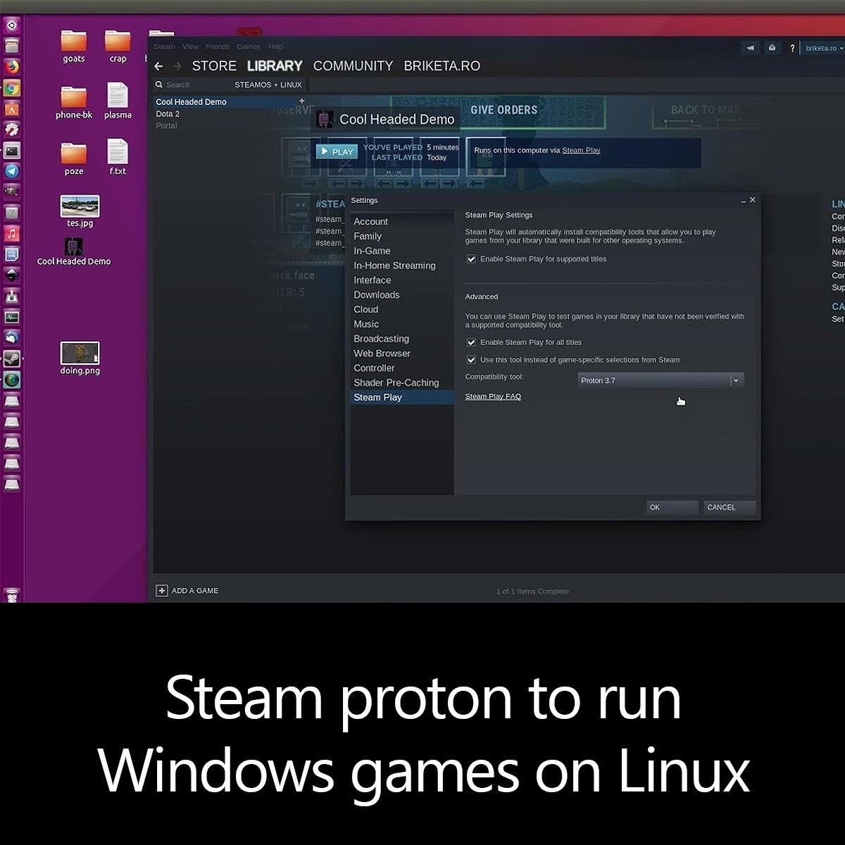 Steam proton to run Windows games on Linux